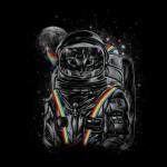 kotsmonavt-kotka-kosmonavt-0