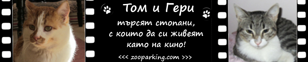 tom-i-geri-banner